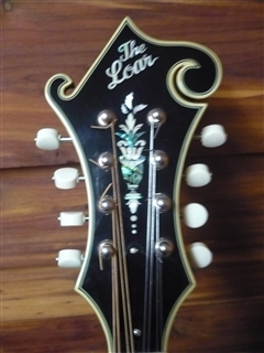 Used Loar LM600VS F-Style Mandolin From Ron's Pickin' Parlor